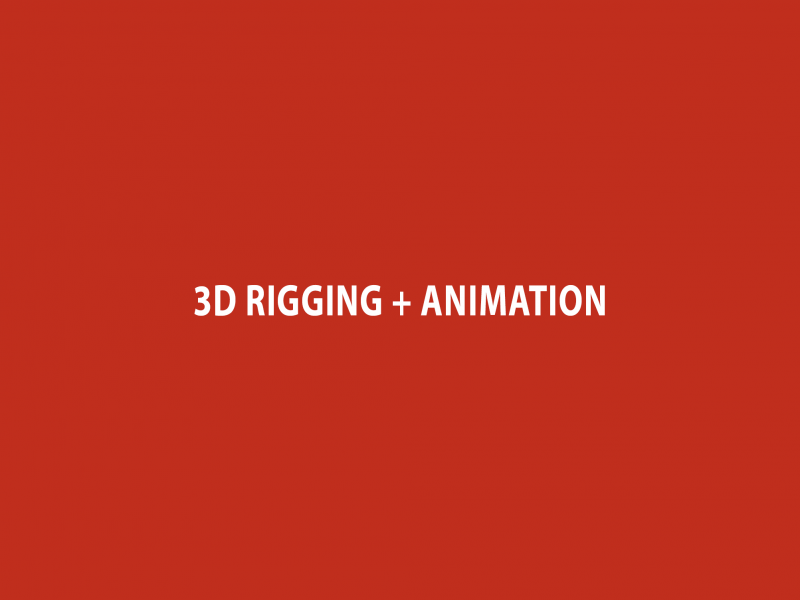 3D Rigging + Animation